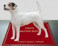 Dakota Mazurski Brzeg