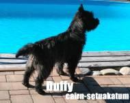 Duffy Cairn-Setuakatum