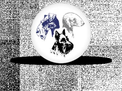 logo_3D_web_400x300.png